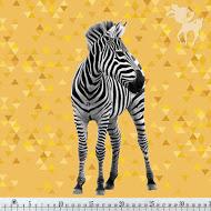 Zebra_01-ruler